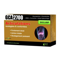 GCA 2700 Articulations