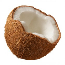 Huile végétale de Coco - Coco nucifera