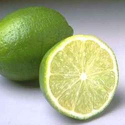 CITRON VERT - citrus aurantifolia
