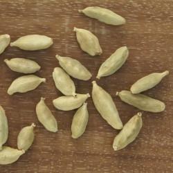 Huile essentielle CARDAMOME - elettaria cardamomum